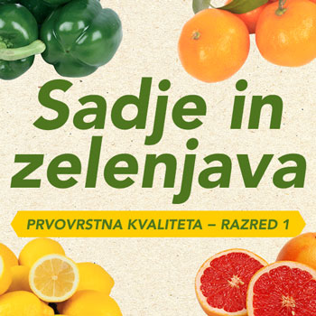 sadje_zelenjava_18-1_2